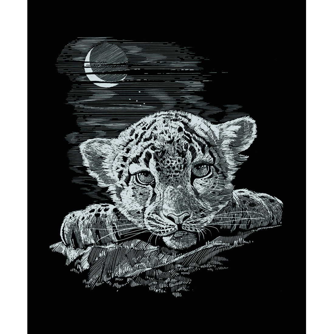Схема вышивки крестом Тигр на черном 14