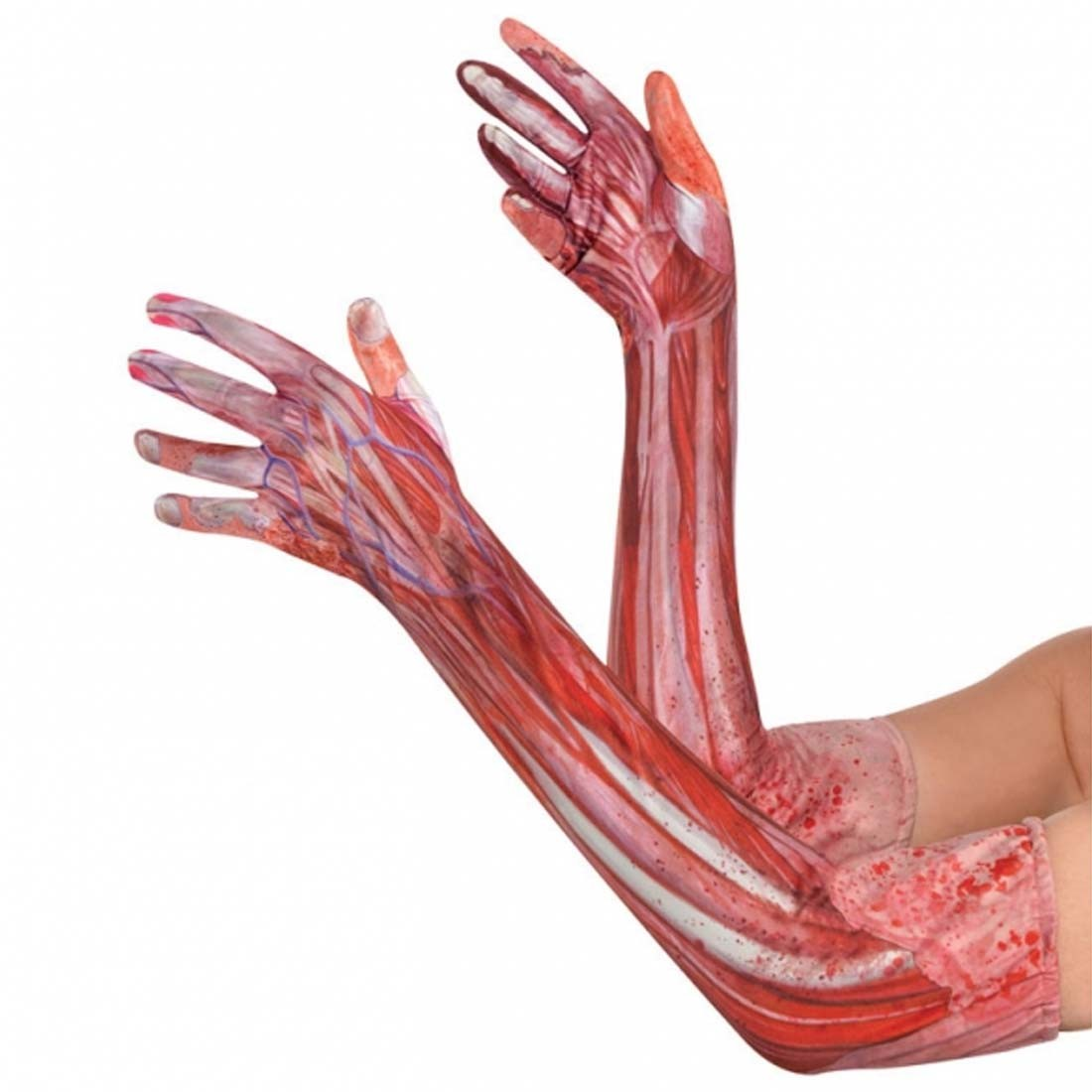Halloween Anatomie Handschuhe Unterarm Mensch, 9,99 ¬